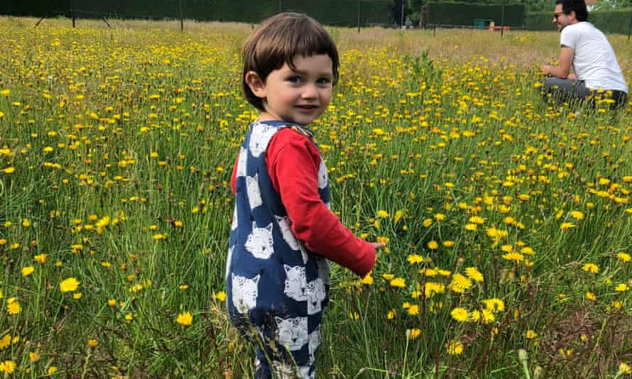 Young child walking in the wildflower meadow