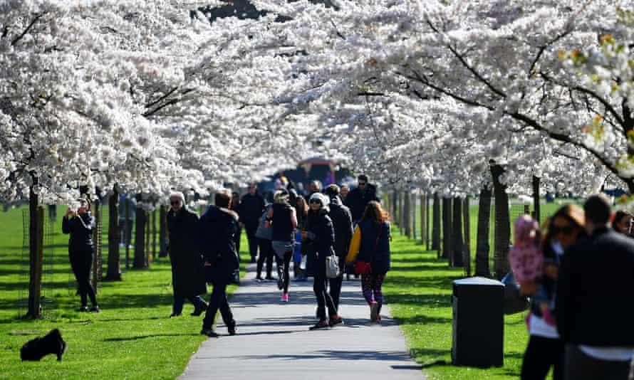 People in Battersea Park, London, on Sunday.