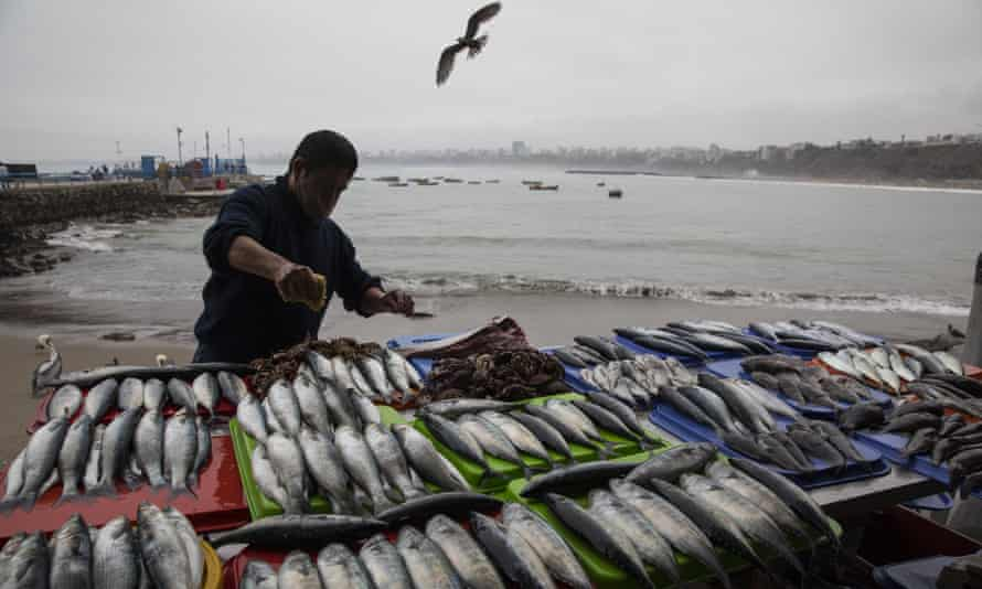 A fish seller in Lima in August. Peru's foreign ministry expressed its 'unease' at the US embassy tweet's 'inconvenient inaccuracy' because the fleet was 'demonstrably' outside its waters.