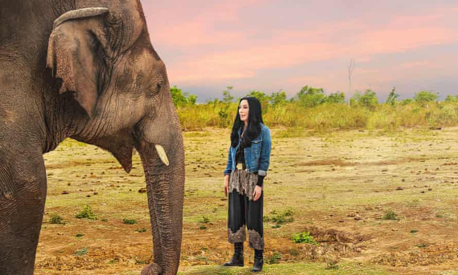 A still from Cher and the Loneliest Elephant