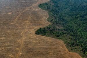 Soybean farmers have burned forestland to expand their acreage. Near Porto Velho, state of Rondônia