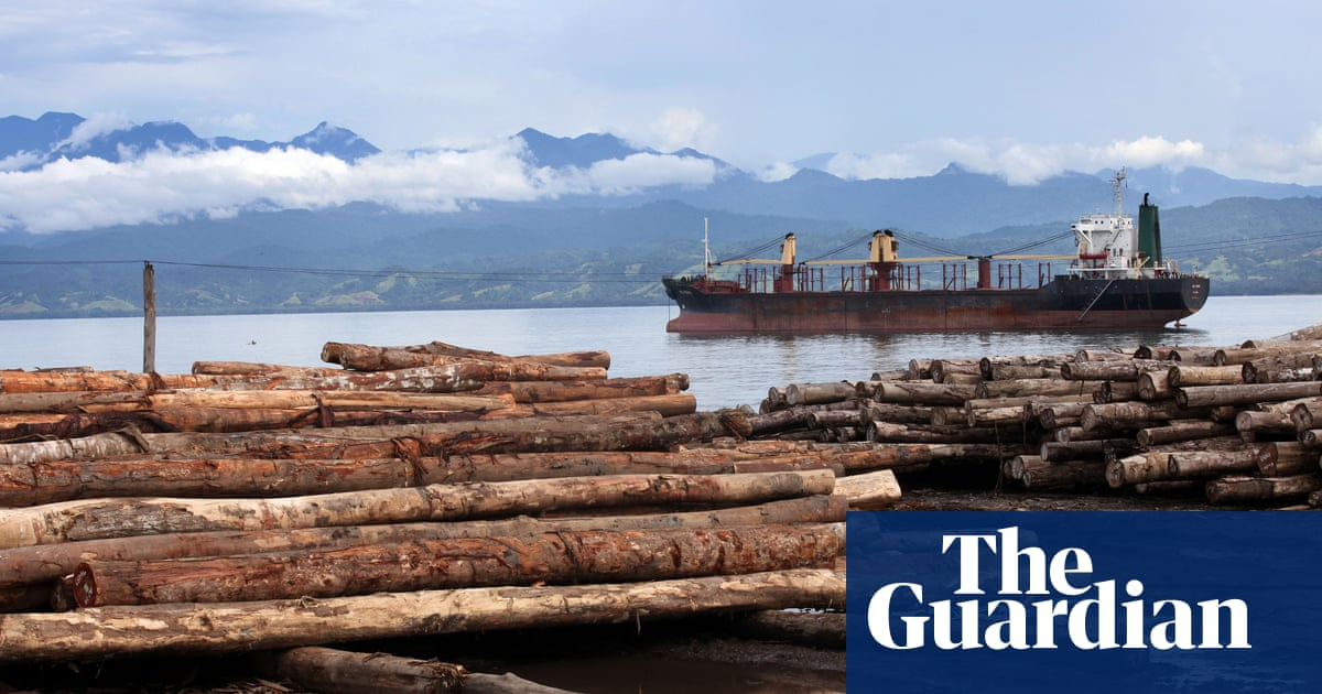 From a forest in Papua New Guinea to a floor in Sydney: how China is getting rich off Pacific timber