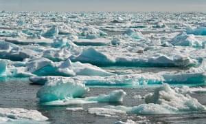Sea ice in the Hudson Strait
