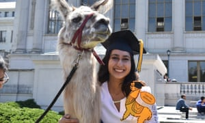 Annam Quraishi with Quinoa the llama at Berkeley, 3 May 2019. She had been preparing for this moment for weeks, she said.