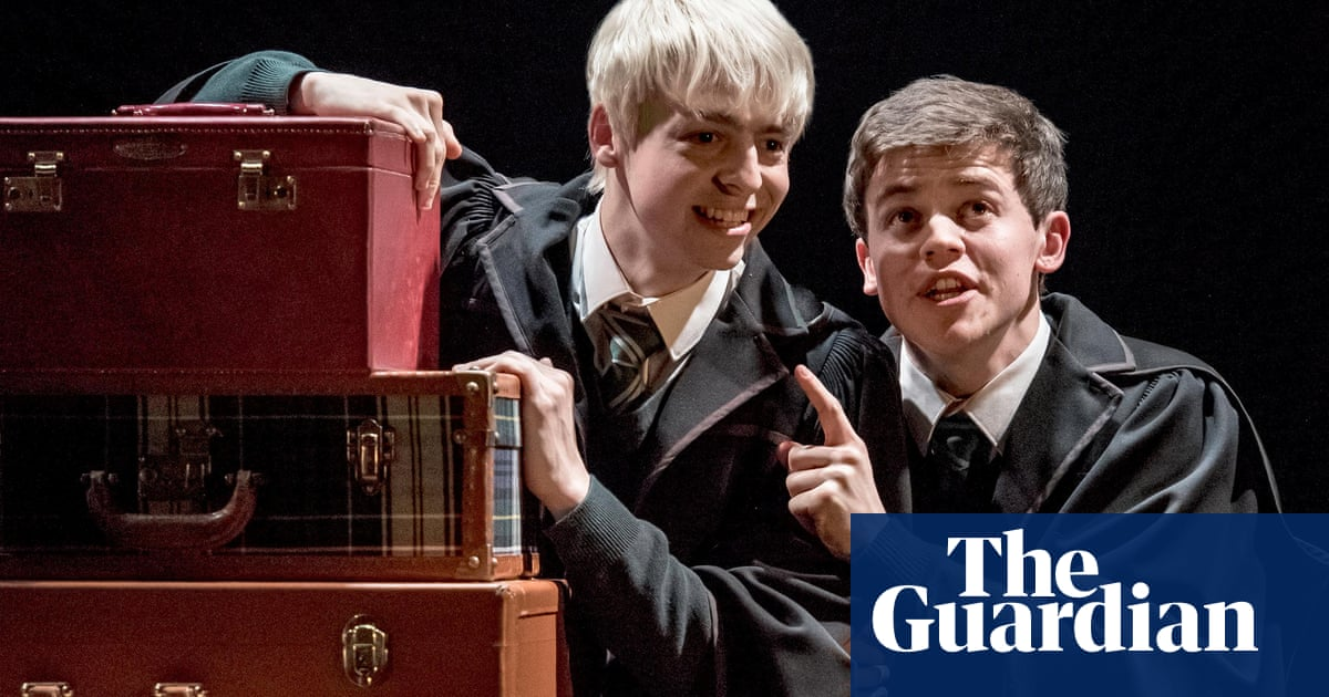 Harry Potter and the Possible Queerbaiting: why fans are mad