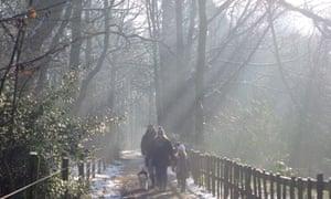 family walking in Moorgreen woods, Nottinghamshire in december