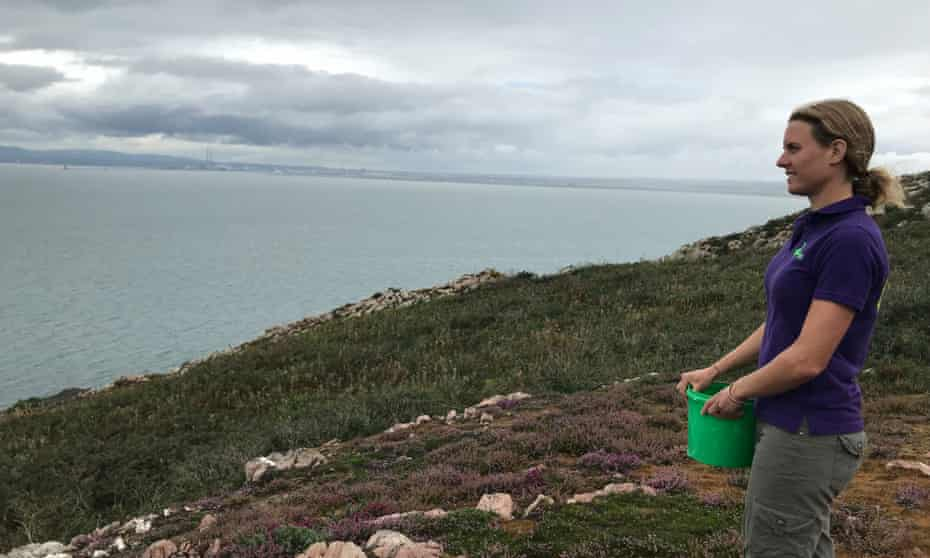Melissa Jeuken watches over Dublin bay from Howth.