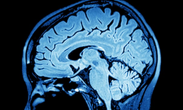 Doubting death: how our brains shield us from mortal truth