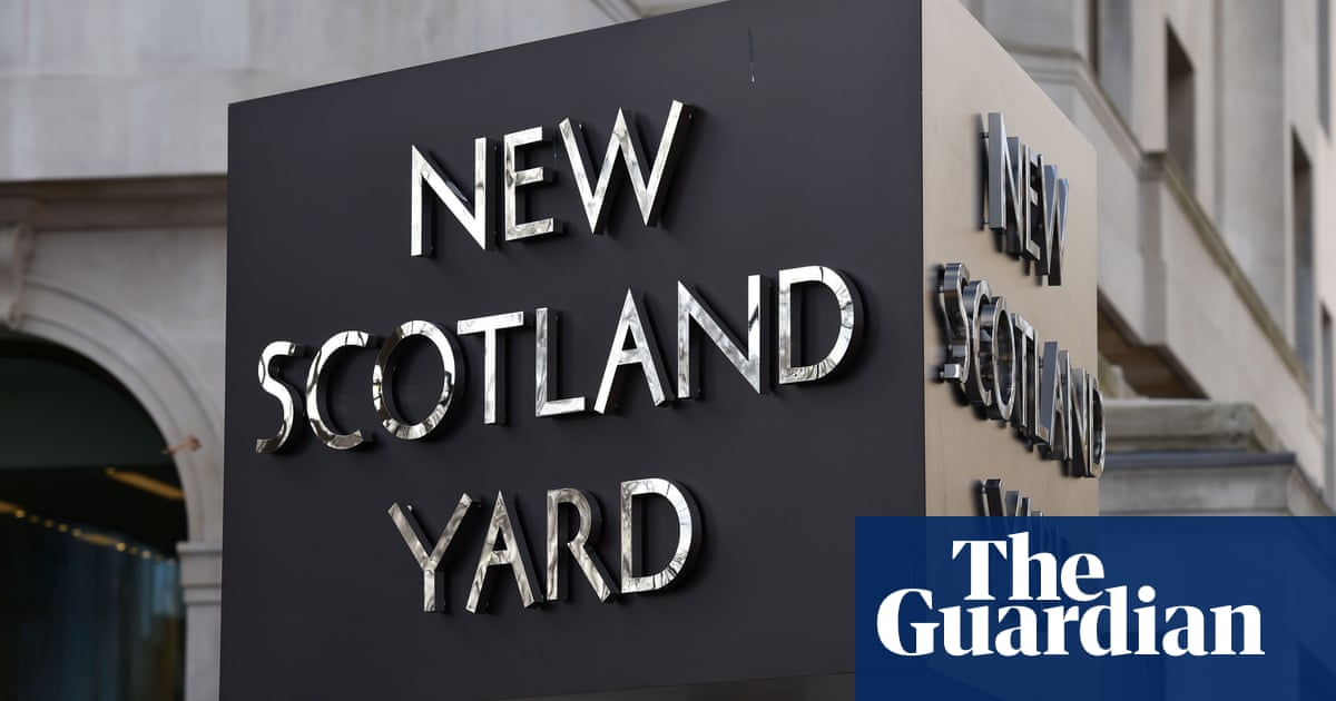 Undercover officer punched activist over spy claim, inquiry told