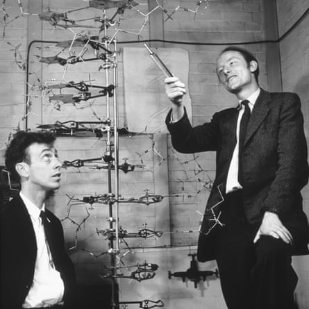 Watson and Crick with a model of DNA in 1953.