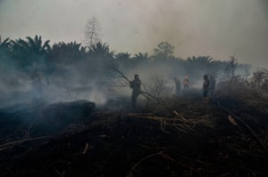 Firefighters battle one of many forest fires spewing toxic haze across the Kampar region, Indonesia.