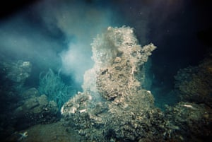 Tiny crabs, tubeworms, and other sea life live next to a hot hydrothermal vent. The heat and minerals expelled by the vent allow these creatures to survive without sunlight at the ocean's floor.