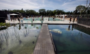 A no-swimming area that works as part of the filtration system at the outdoor natural pool in Edmonton, Canada. The pool uses a filter, hydrobotanical beds and intense ultraviolet from the sun. to keep the water clean.