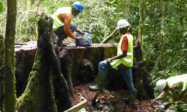 Using mapping software in the Cameroon rainforest