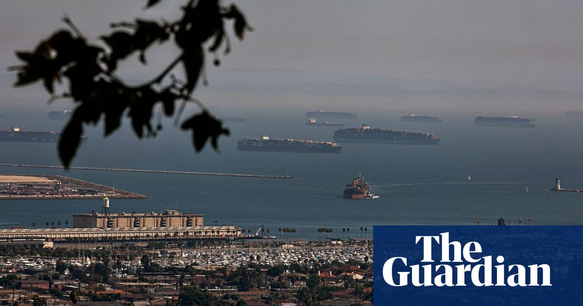 Ships backed up outside US ports pumping out pollutants as they idle