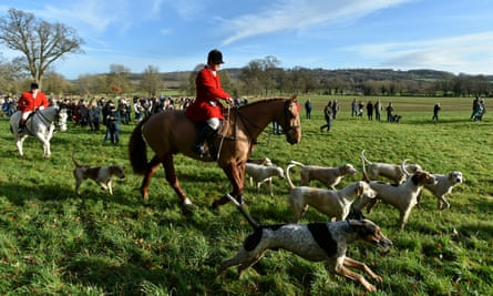 A horse and dogs at the Avon Vale hunt in Wiltshire in December 2017