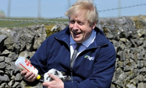 """Probably safe to say Donald Trump has never fed a lamb, though is likely to have been fed lamb. Joe Biden previously called Johnson a """"physical and emotional clone"""" of Donald Trump.Here's Johnson on the trail earlier today to boost Conservative chances in a local election."""