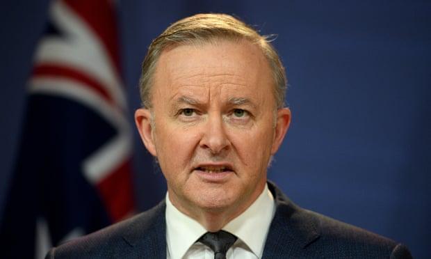 australia,Labor party,'Buy Australian',Anthony Albanese,New South Wales,buy Australian,harbouchanews