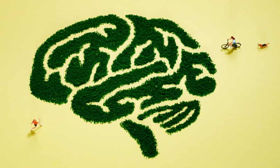 Illustration of people exercising in a maze in the shape of a brain