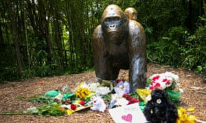 Flowers around a bronze statue of a gorilla and her baby at Cincinnati zoo in memory of Harambe.