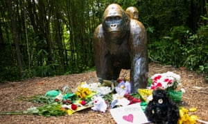 Flowers lie around a bronze statue of a gorilla and her baby outside the Cincinnati Zoo's Gorilla World exhibit, two days after a boy entered Harambe's enclosure.