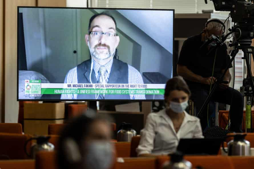 UN rapporteur Michael Fakhri on video call