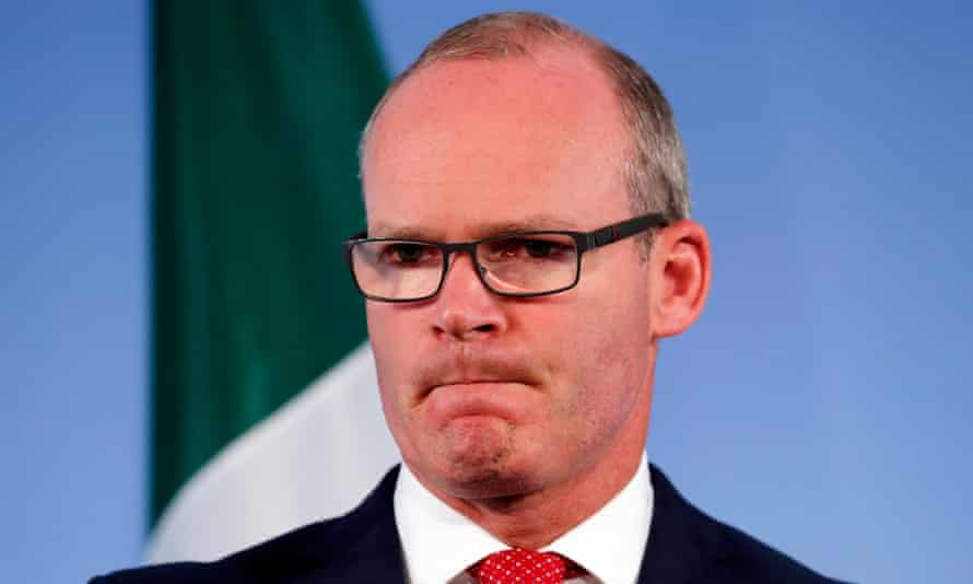 Irish deputy PM Simon Coveney spoke of the danger of oversimplifying complex constitutional questions.