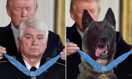 An image tweeted by Donald Trump replaced James McCloughan's image with that of the dog involved in the Isis raid that killed Abu Bakr al-Baghdadi.