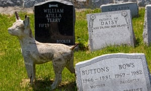 Gravestones for various animals at the Hartsdale Pet Cemetery in Hartsdale New York