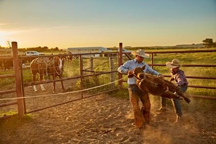 A cowboy part of the Spade cattlemen team handles a calf before branding it.