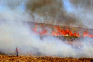 Burning the gorse on Dartmoor near Haytor.