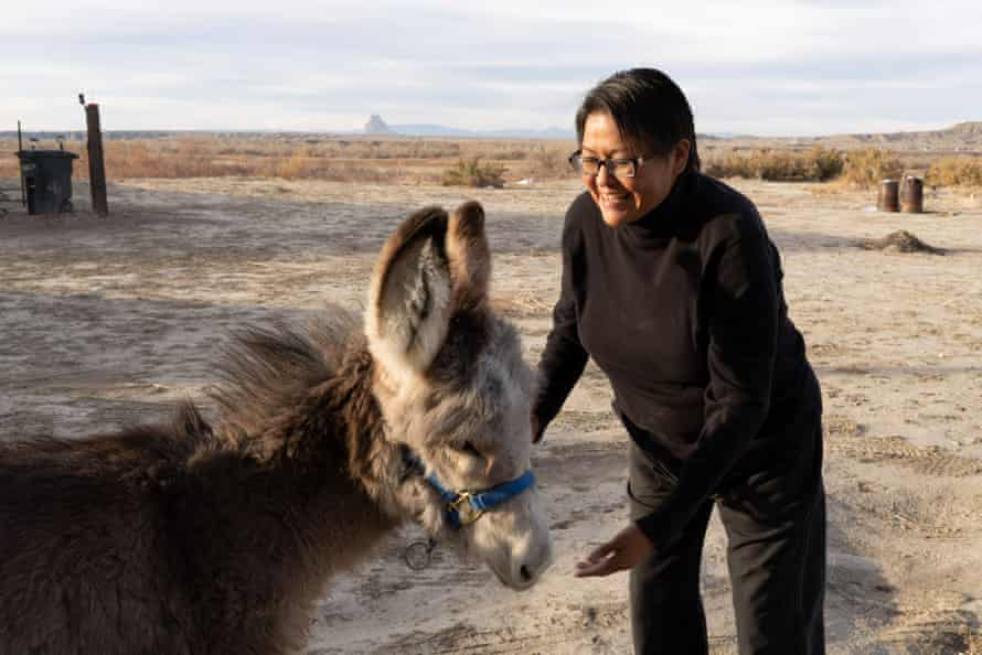 Eugenia Charles-Newton, a Navajo Nation Council delegate, at home in Shiprock with her donkey, Brandy.