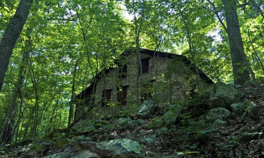 cabin woods.