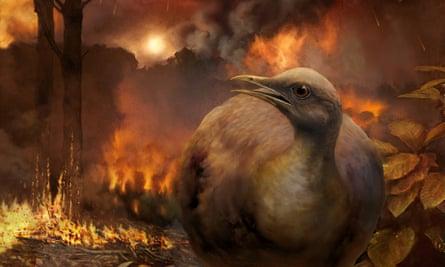 Flightless bird in a forest during a meteor - artist's illustration