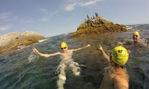 A Vies Braves swimming courses around the Costa Brava coastline. stopping to look at wildlife was a good, natural way of regrouping