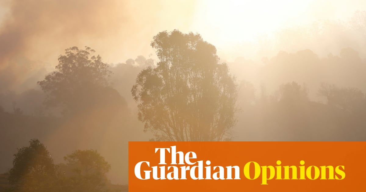 I never thought I'd see the Australian rainforest burning. What will it take for us to wake up to the climate crisis? | Joëlle Gergis