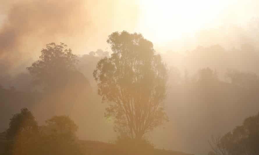 Bushfire on the Gold Coast