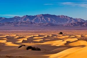Cadiz Dunes at sunrise, Sheephole Mountains in distance at Mojave Desert, Mojave Trails National Monument, California, USA