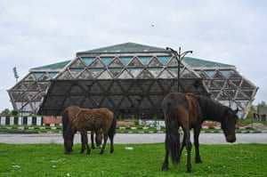 Horses graze at a field in front of an indoor stadium which was turned into a quarantine centre in Srinagar in the state of Jammu and Kashmir on 20 April.