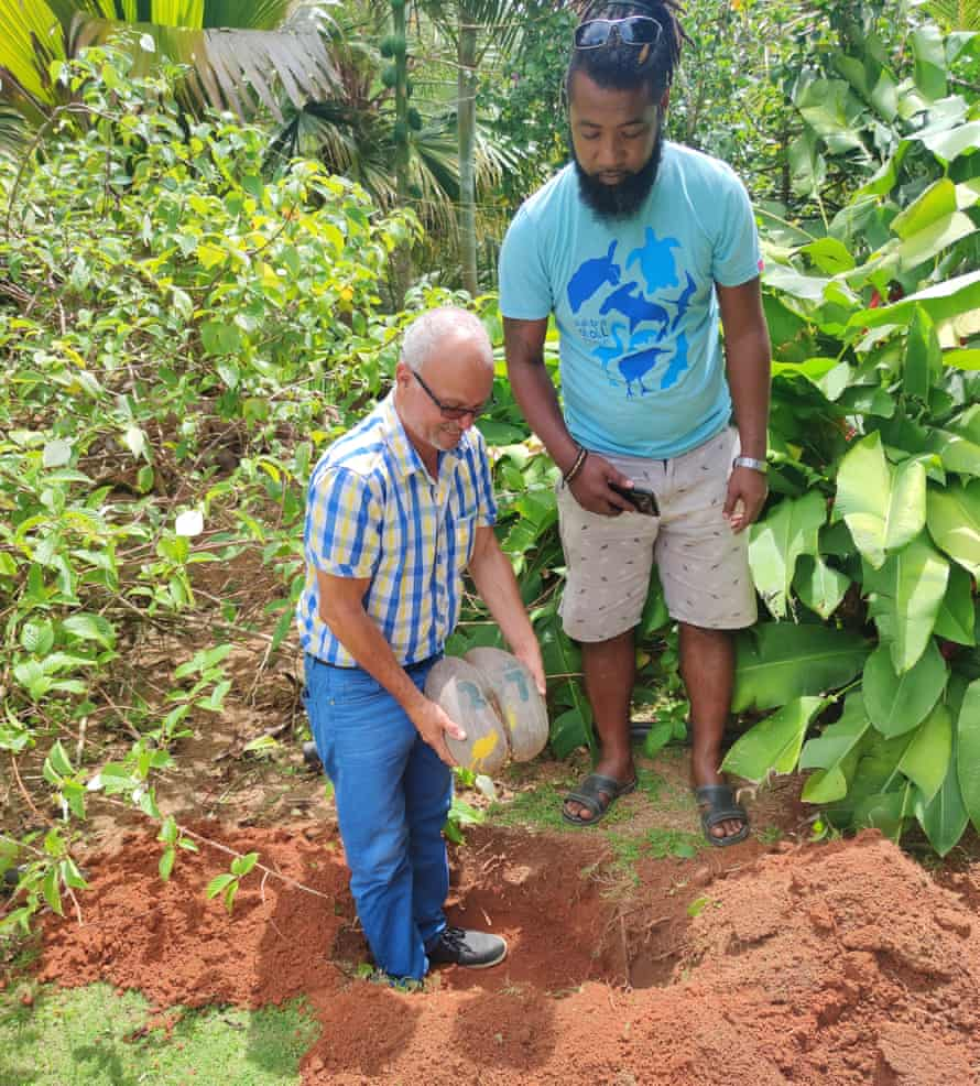 Alix Esparon plants a coco de mer seed on his Mahé property, with Ronny Rose from Seychelles Islands Foundation, in October 2020.