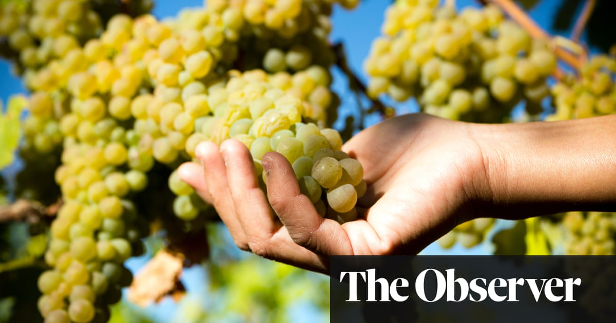 It's time to say yay to viognier
