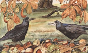 An illustration by Jackie Morris from the book The Lost Words by Robert Macfarlane, Penguin Random House.