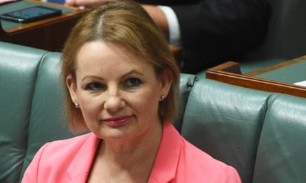 The federal health minister, Sussan Ley, announced the government's plans for 'healthcare homes' on Thursday.