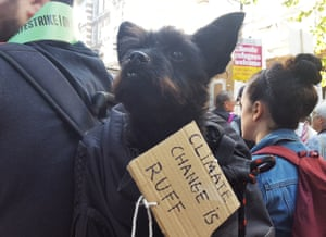 Andrew Bevan, 29, of Cardiff, brought Rico, a six-year-old rescue dog, to the protest in Whitehall, London.