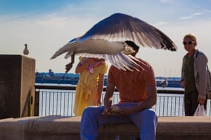 Andy Allchurch, Do not feed the gulls, Liverpool
