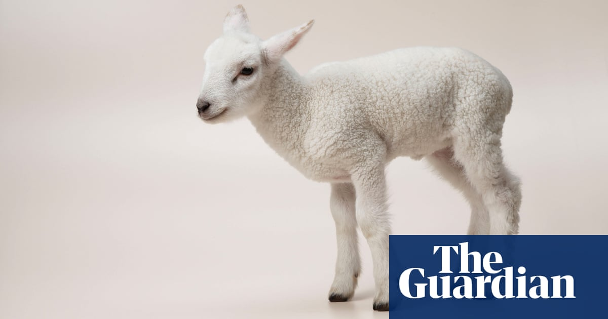 A lovely fleece, a hip priest and the number of the beast – take the Thursday quiz