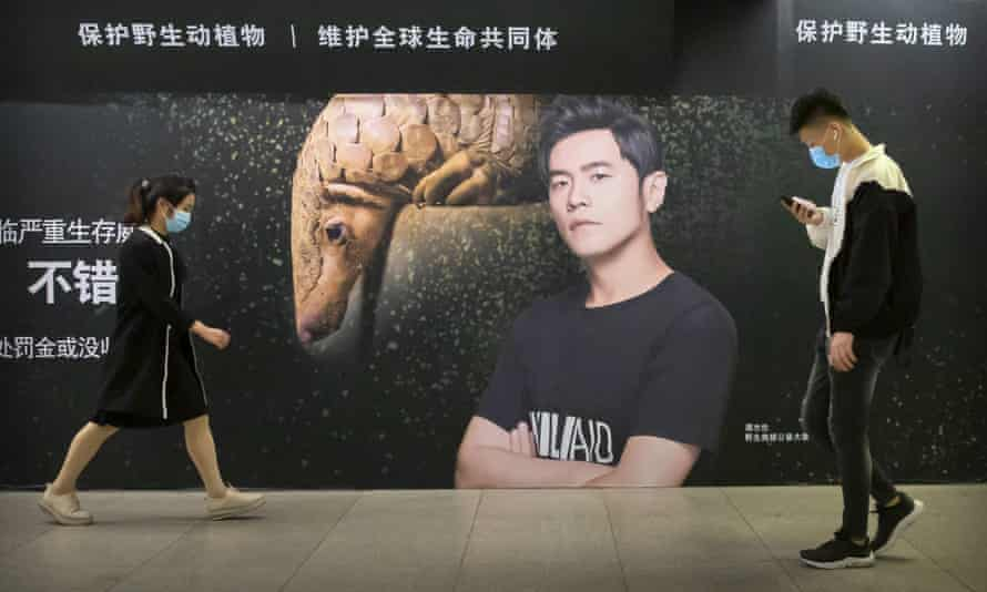 A billboard in Beijing encouraging people to protect pangolins.