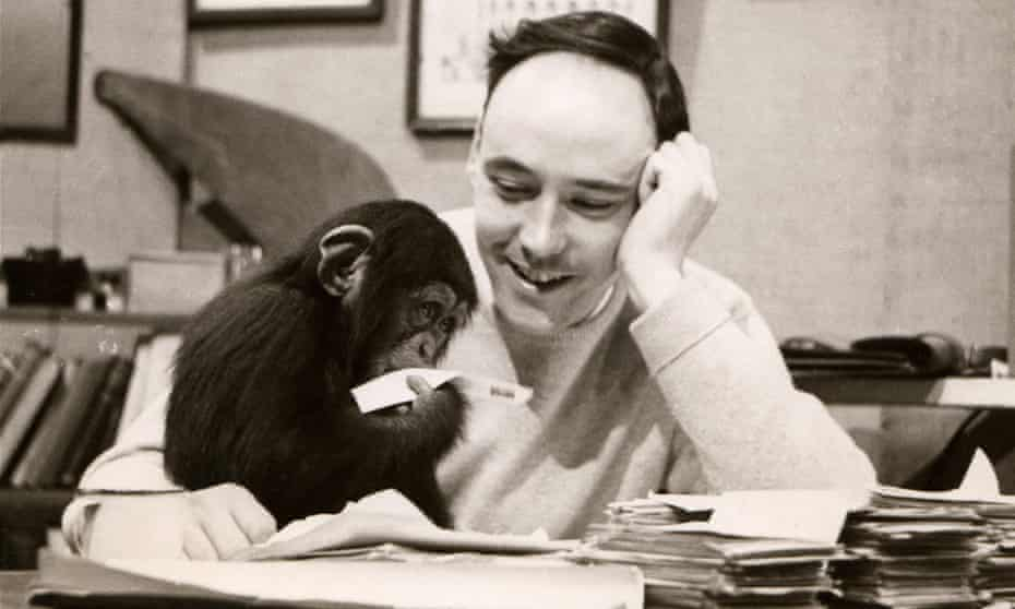 Desmond Morris with the chimpanzee Congo