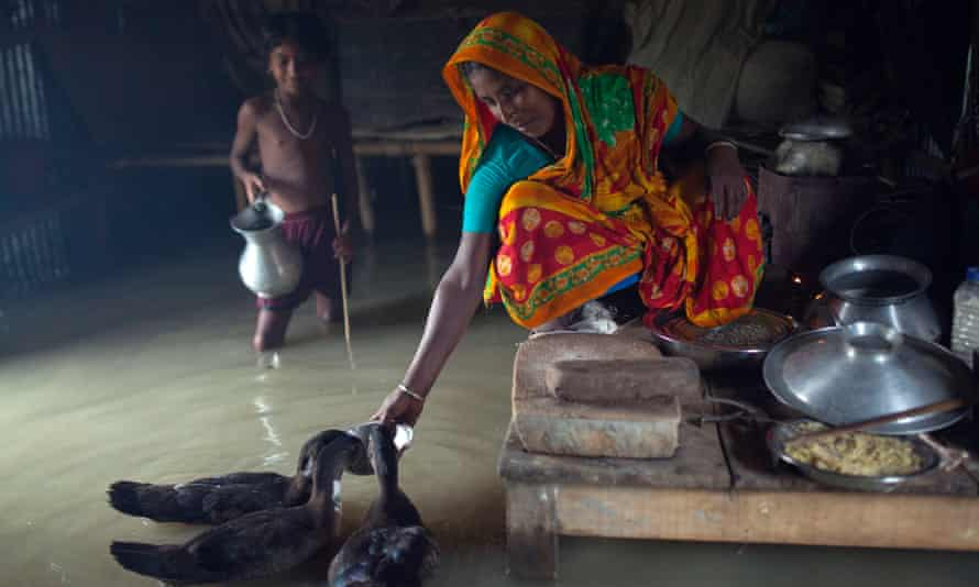 A woman feeds hens in her house in the flood-hit Kurigram district of Bangladesh