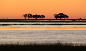 Ancestral home of modern humans is in Botswana, study finds